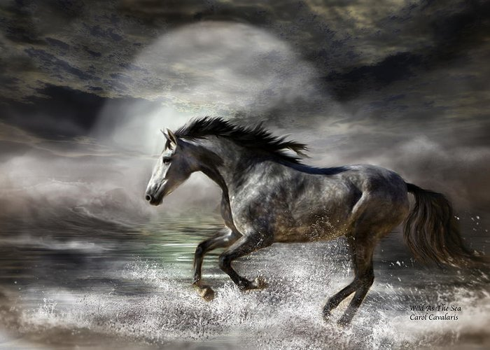 Horse Greeting Card featuring the photograph Wild As The Sea by Carol Cavalaris