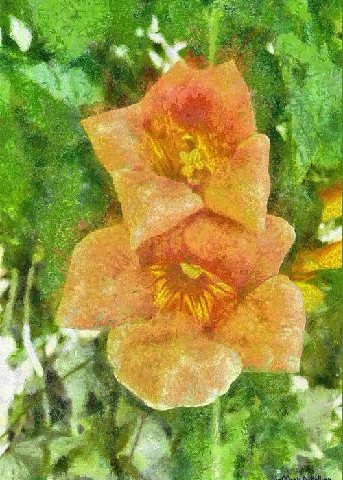 Bloom Greeting Card featuring the painting Wild Flowers by Jeff Kolker