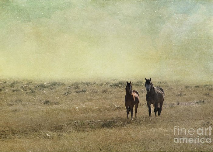 America Greeting Card featuring the photograph Wild Pair by Juli Scalzi