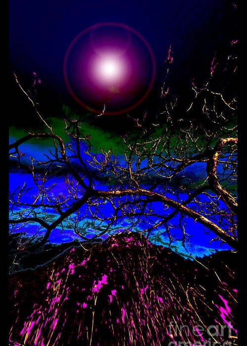 New World Greeting Card featuring the photograph Wild Plum In New World Dawn by Susanne Still