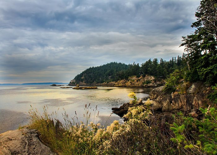 Larrabee State Park Greeting Card featuring the photograph Wildcat Cove by Robert Bales