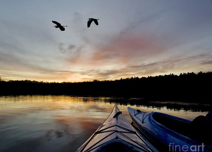 Bay Greeting Card featuring the photograph Wilderness Lake Sunset by Gord Horne