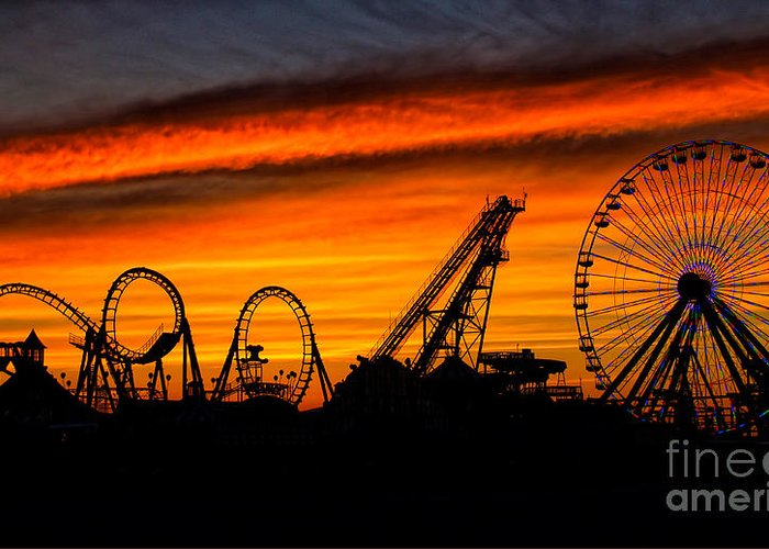 Wildwood Greeting Card featuring the photograph Wildwood At Dawn by Mark Miller