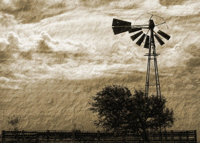 Sepia Greeting Card featuring the photograph Wind Blown by Tony Grider