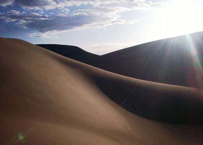 Sand Greeting Card featuring the photograph Windblown Curves by Carlee Ojeda