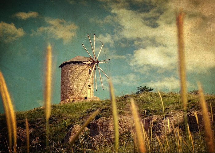 Nature Greeting Card featuring the photograph Windmill 14 48 by Taylan Apukovska