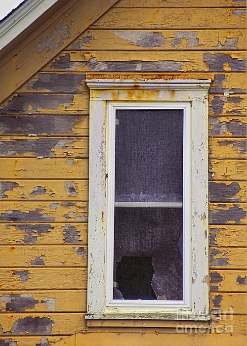 Broken Greeting Card featuring the photograph Window In Abandoned House by Jill Battaglia