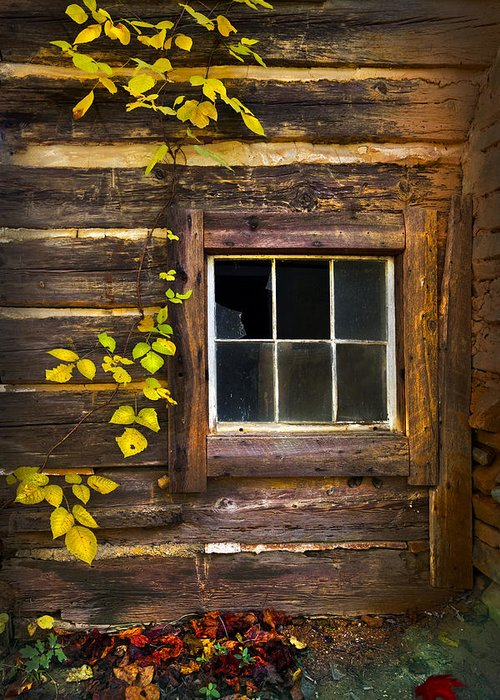 Appalachia Greeting Card featuring the photograph Window To The Soul by Debra and Dave Vanderlaan