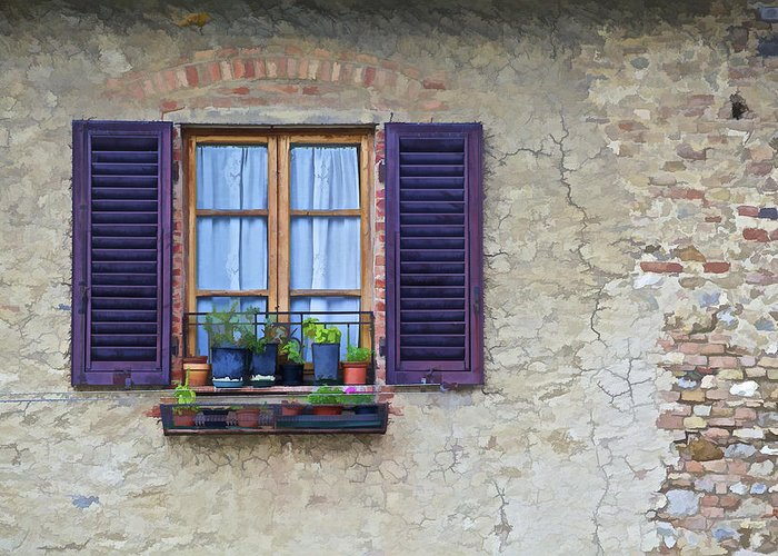 Brick Greeting Card featuring the photograph Window With Potted Plants Of Rural Tuscany by David Letts