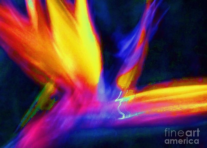 Wings Greeting Card featuring the photograph Wings Of Color Abstract by Eric Schiabor