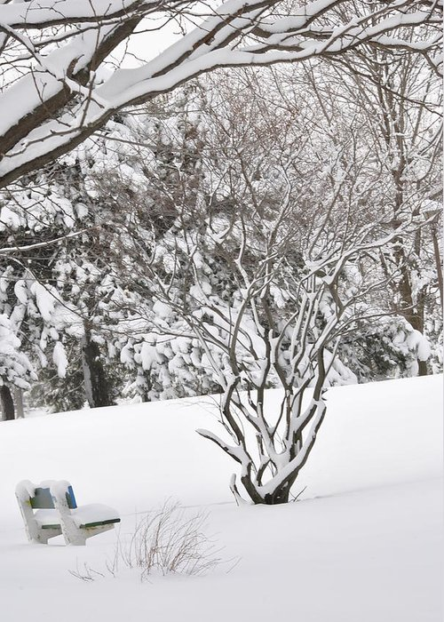 Winter. Snow Greeting Card featuring the photograph Winter Bench by Frederico Borges