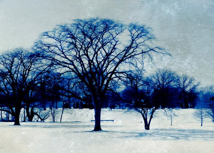 Blue And White Greeting Card featuring the photograph Winter Blues by Shawna Rowe