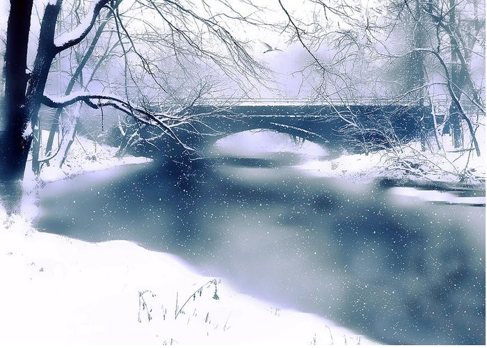 Winter Greeting Card featuring the photograph Winter Haiku by Jessica Jenney