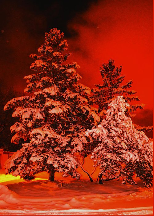 Snowstorm Greeting Card featuring the photograph Winter In Minneapolis by Archana N