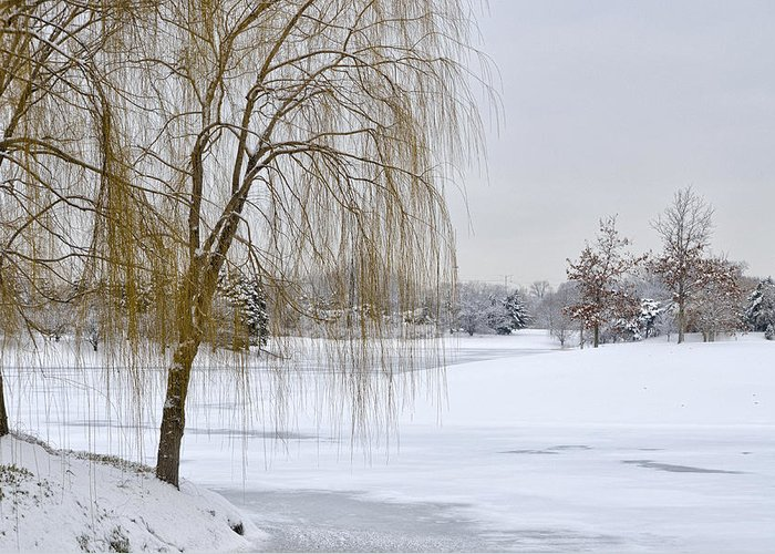 Winter Scene Greeting Card featuring the photograph Winter Landscape by Julie Palencia