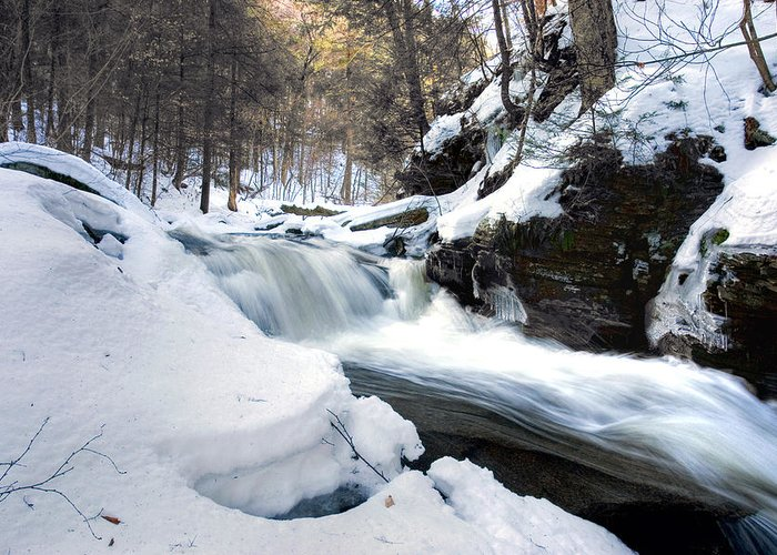 Waterfall Greeting Card featuring the photograph Winter Meltdown Rushing Over Conestoga Falls by Gene Walls