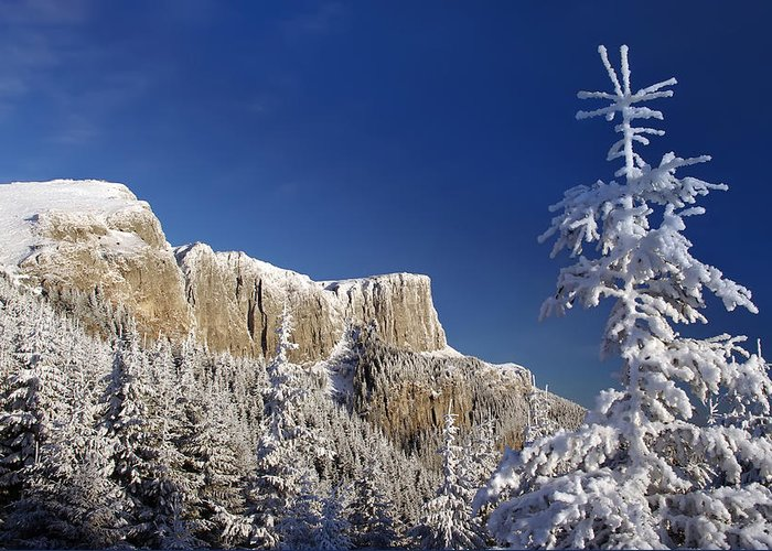 Alpine Greeting Card featuring the photograph Winter Mountain Landscape by Ioan Panaite