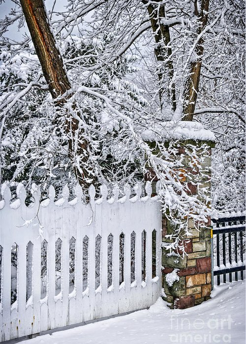 Winter Greeting Card featuring the photograph Winter Park Fence by Elena Elisseeva