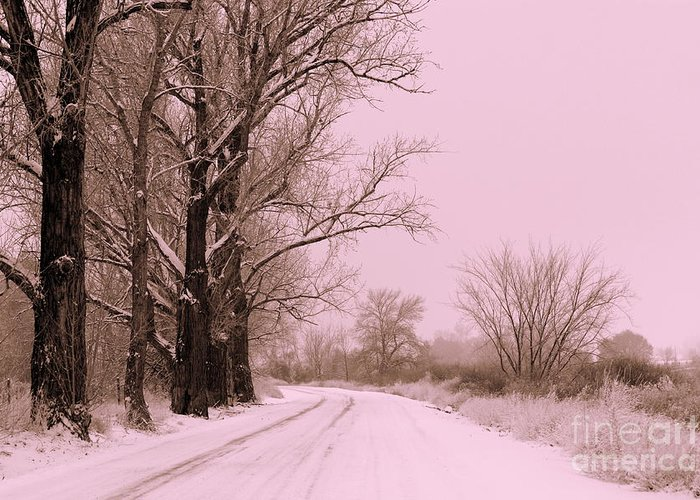 Winter Greeting Card featuring the photograph Winter Pink by Carol Groenen
