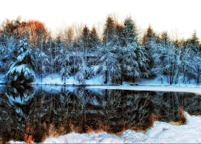 Pond Greeting Card featuring the photograph Winter Pond At Shady Grove		 by Judy Duncan