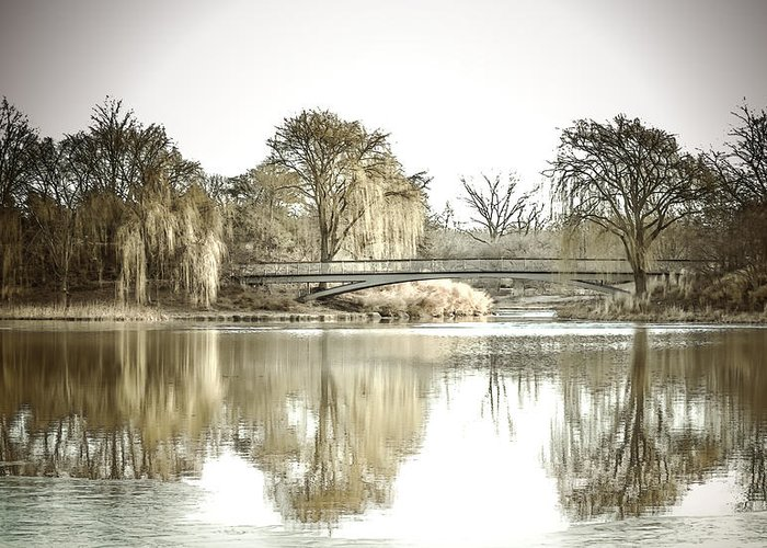 Landscape Greeting Card featuring the photograph Winter Reflection Landscape by Julie Palencia