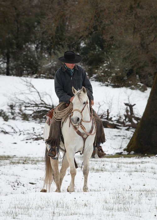 Winter Greeting Card featuring the photograph Winter Riding by Diane Bohna