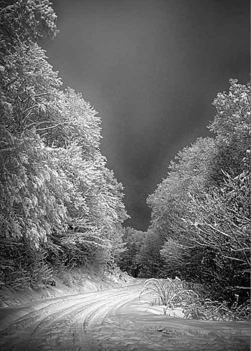 Tree Greeting Card featuring the photograph Winter Road by John Haldane