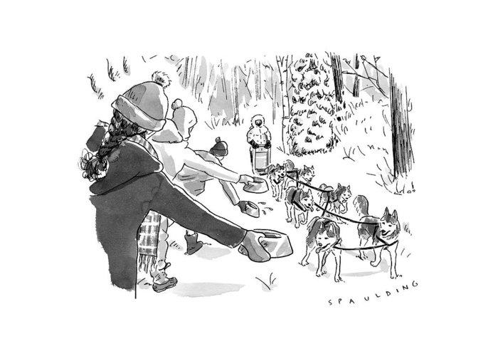 Dog Sled Greeting Cards