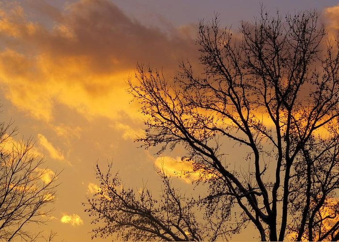 Sky Greeting Card featuring the photograph Winter Sunset In Pa by Jeanette Oberholtzer