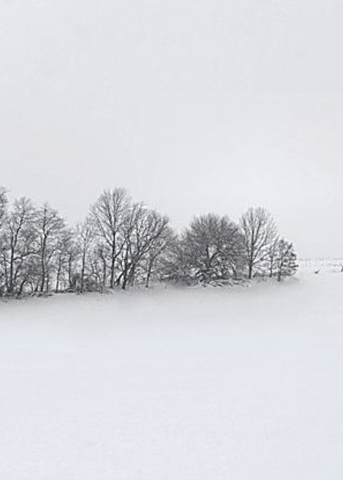 Winter Greeting Card featuring the photograph Winter Tree Line In Indiana by Julie Dant