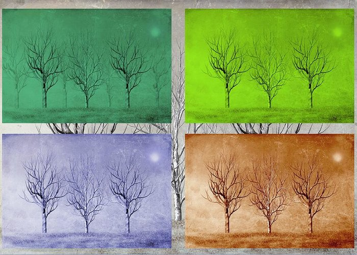 Trees Greeting Card featuring the digital art Winter Trees by David Dehner
