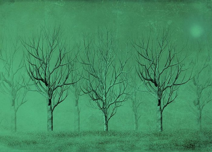 Trees Greeting Card featuring the digital art Winter Trees In The Mist by David Dehner
