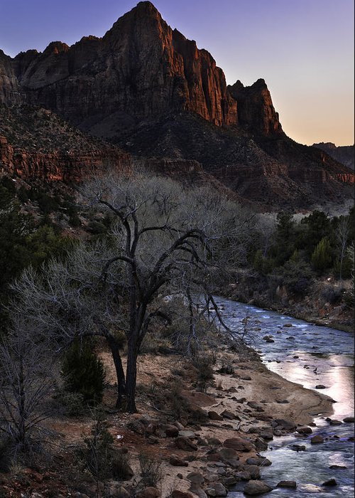 Winter Watchman Greeting Card featuring the photograph Winter Watchman by Chad Dutson
