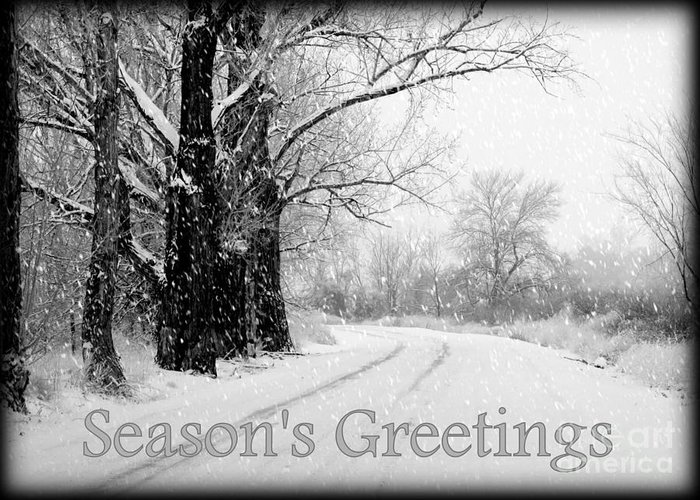 Seasonal Greeting Card featuring the photograph Winter White Season's Greeting Card by Carol Groenen
