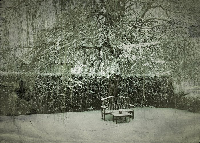 Willow Greeting Card featuring the photograph Winter Willow And Snow Covered Seat by John Colley