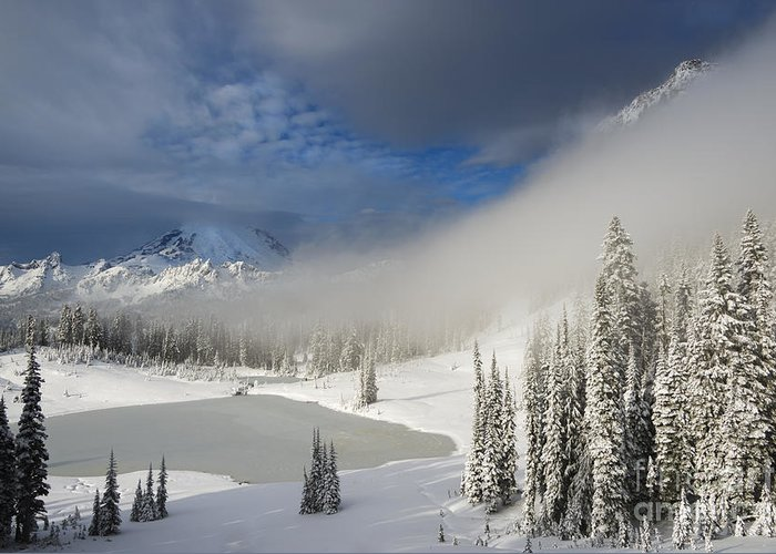 Winter Greeting Card featuring the photograph Winter Wonderland by Mike Dawson