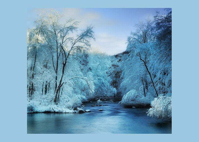 Winter Greeting Card featuring the photograph Winter Wonderland by Thomas Schoeller
