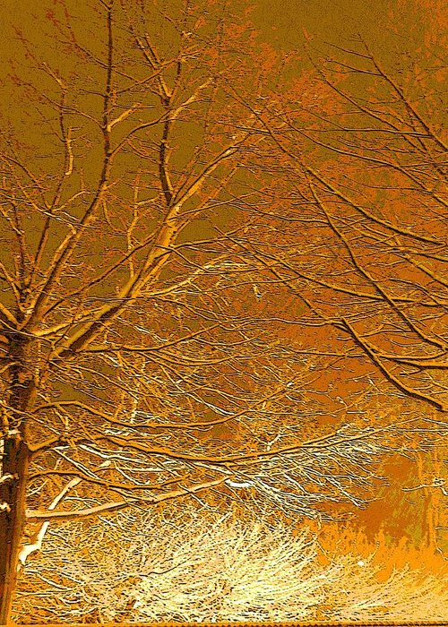 Winter Greeting Card featuring the photograph Winters Touch 2 by Nicki Bennett