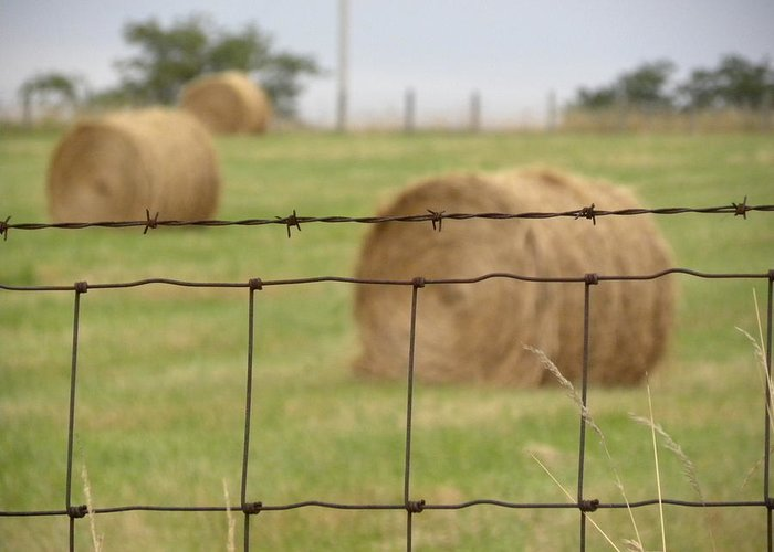 Barbed Wire Greeting Card featuring the photograph Wire And Hay by Jewels Blake Hamrick
