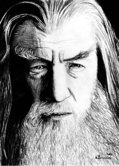 Gandalf Greeting Card featuring the drawing Wise Wizard by Kayleigh Semeniuk