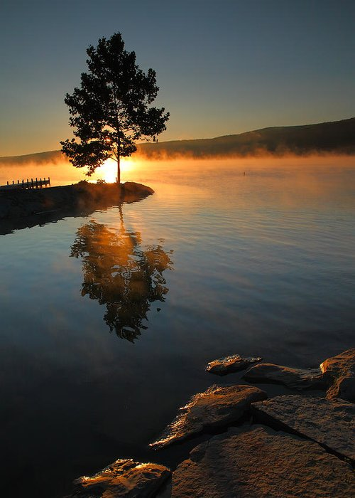 Tree Greeting Card featuring the photograph Witness To The Dawn IIi by Steven Ainsworth