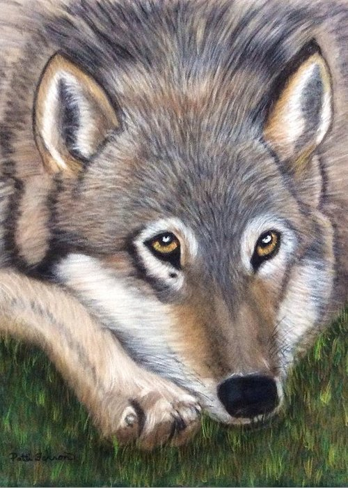Wolf Greeting Card featuring the painting Wolf by Patti Ferron