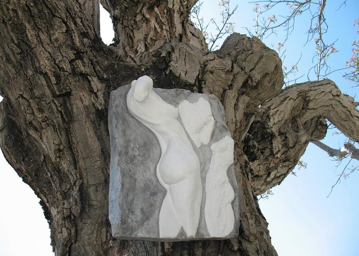 Nude Woman Torso Sculpture Greeting Card featuring the relief Woman Torso - Cast 1 by Flow Fitzgerald