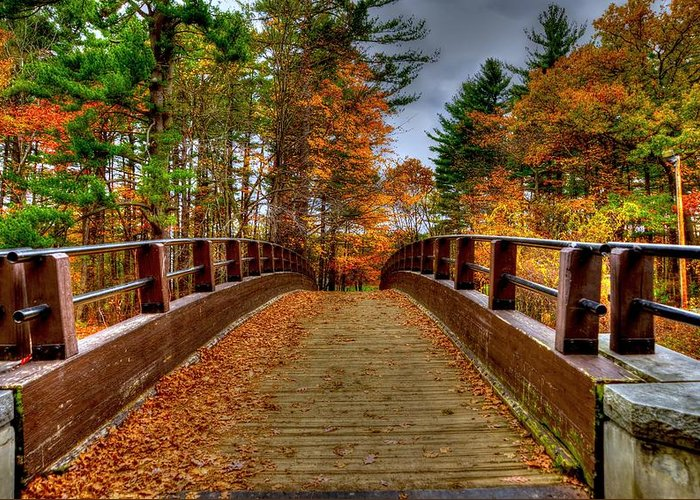 Bridge Greeting Card featuring the photograph Wooden Bridge by Craig Incardone