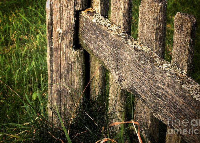 Wooden Fence Fragment Greeting Card featuring the photograph Wooden Fence Fragment by Jolanta Meskauskiene