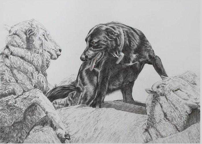 Working Dog Greeting Card featuring the drawing Working Mother II by Leonie Bell
