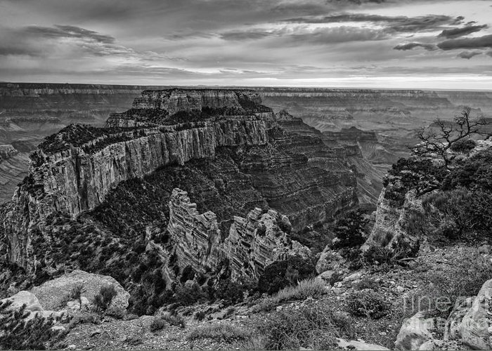 North Rim Greeting Card featuring the photograph Wotan's Throne North Rim Grand Canyon National Park - Arizona by Silvio Ligutti