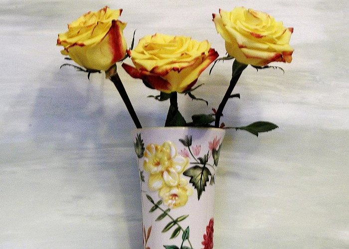Photo Greeting Card featuring the photograph Yellow And Red Tipped Roses by Marsha Heiken