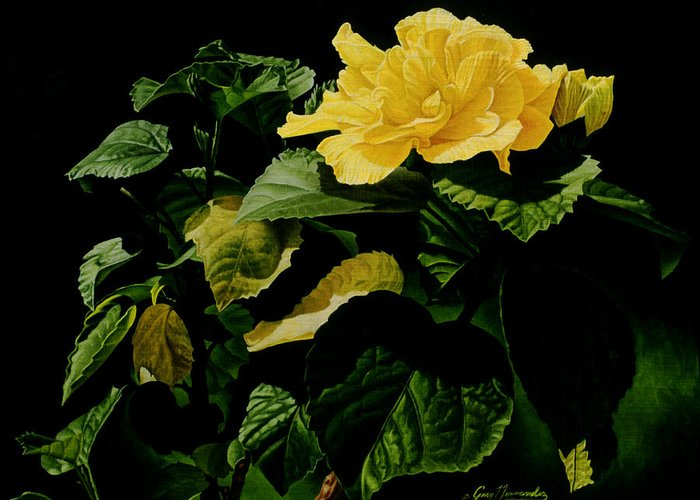 Floral Greeting Card featuring the painting Yellow Hibiscus by Gary Hernandez