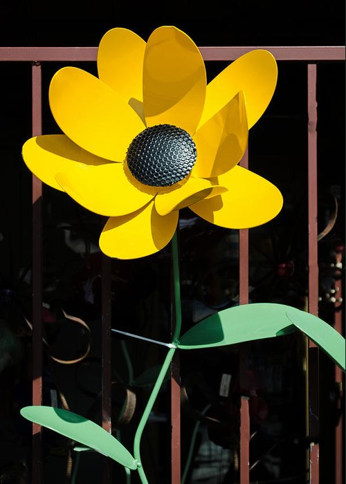 Sunflower Stake Greeting Card featuring the photograph Yellow Metal Garden Flower by Tikvah's Hope